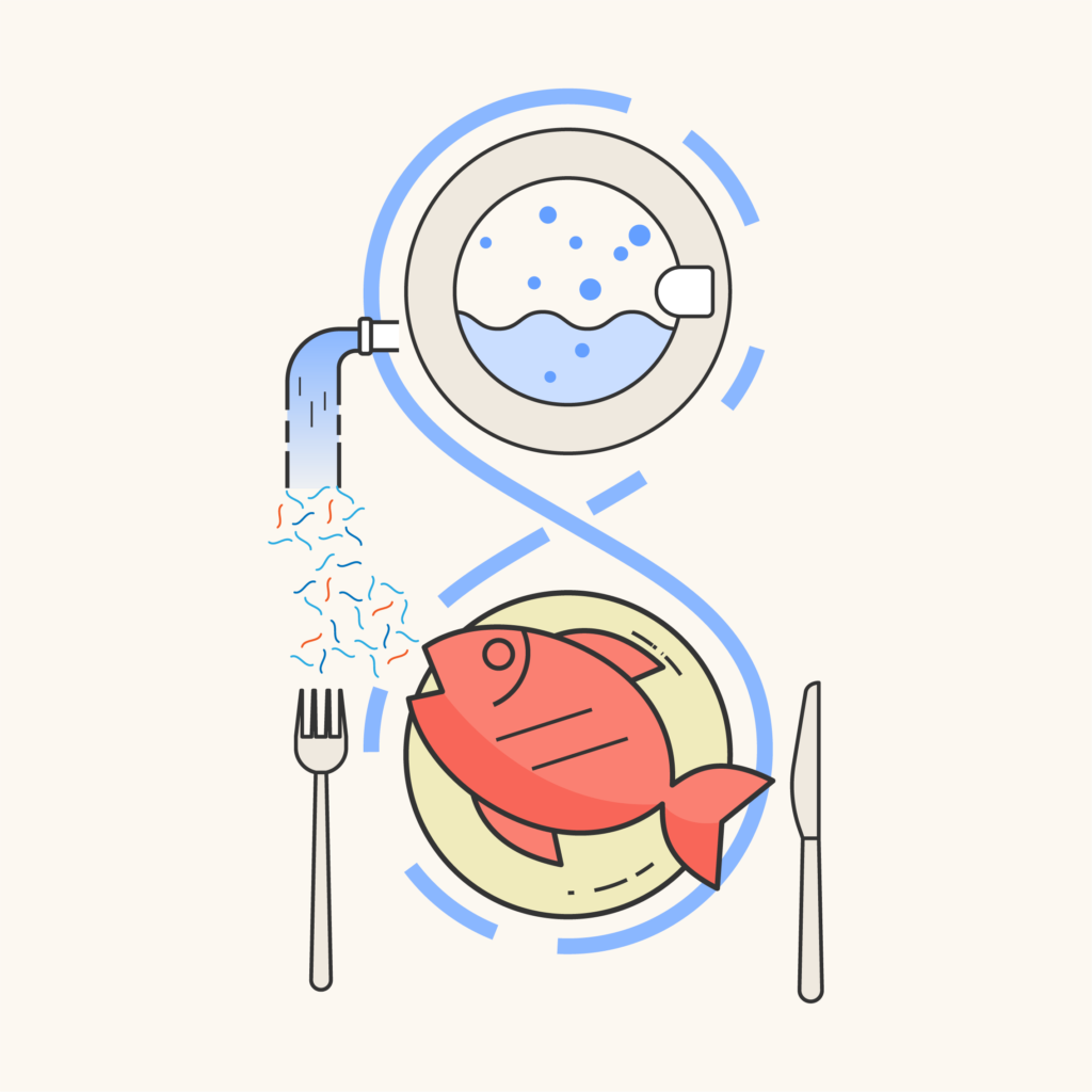 Microplastics in food chain